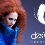 designeria trendy show