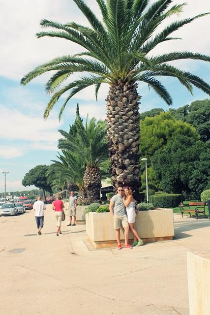 zdjecie przy palmie