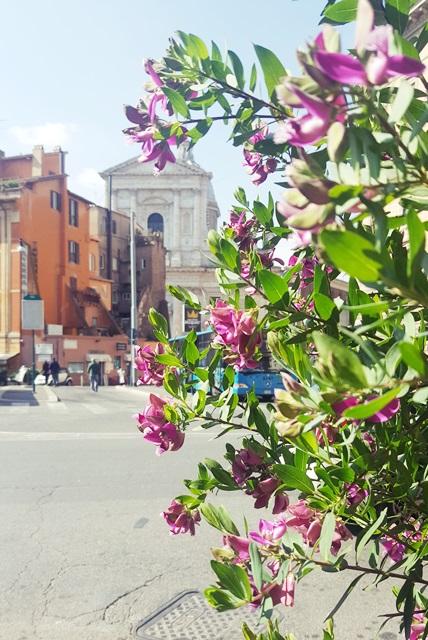 rzym luty zwiedzanie